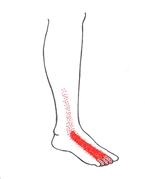 smärta på fotens ovansida